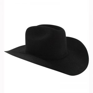 5324 Stetson Men's Apache 4X Buffalo Felt Hat